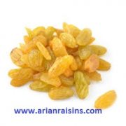 iran export raisins price