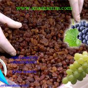 Sultana Raisins supplier