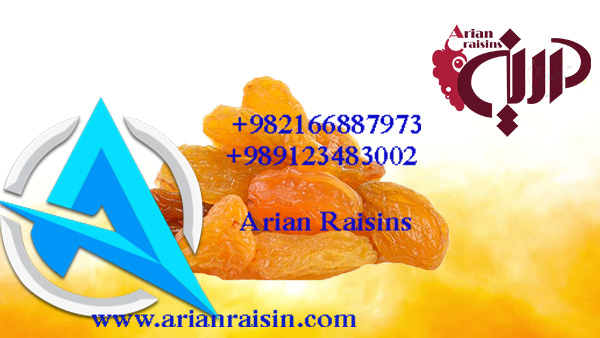 the best golden raisins