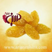 sell raisins online