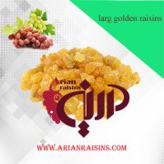 large golden raisins