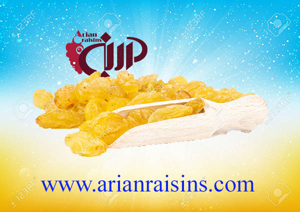 raisins price wholesale