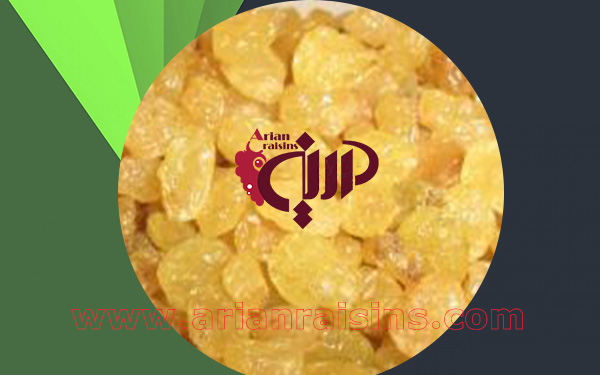 golden raisins supplier