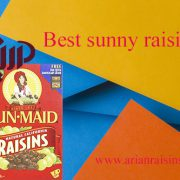 Sun maid raisins price