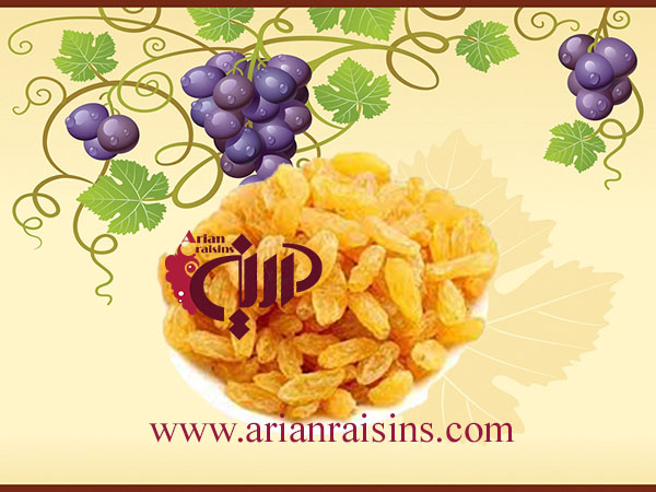 golden raisins manufacturers