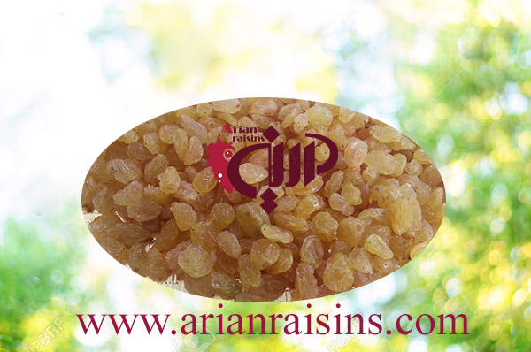 iranian golden raisins