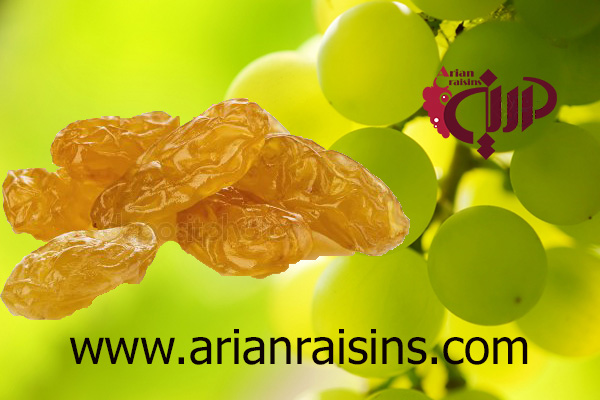 best golden raisins