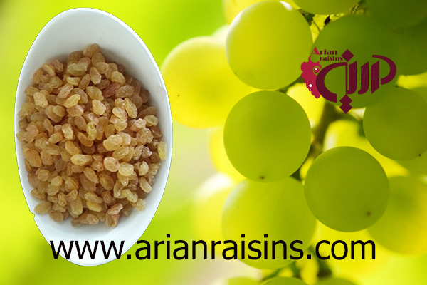 import golden raisins
