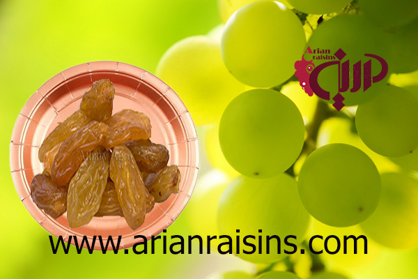 supplier golden raisins