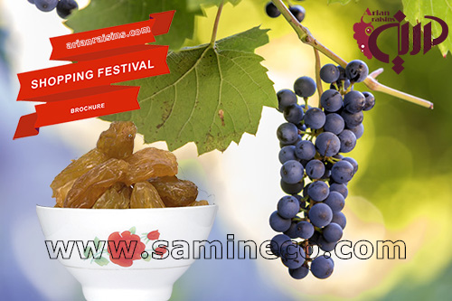 Top countries worldwide exporting raisin