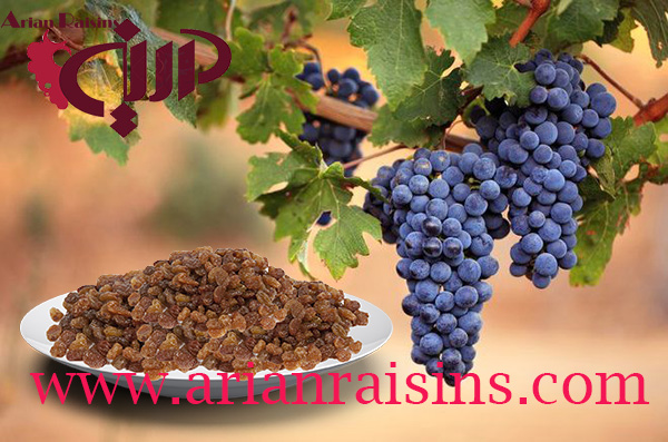 dry raisins price